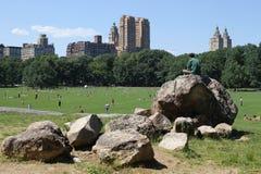 Central Park a New York Immagini Stock Libere da Diritti