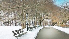 Central Park New York Fotos de Stock Royalty Free