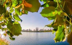 Central Park, New York Immagine Stock Libera da Diritti