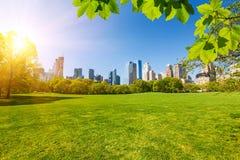 Central Park, New York Imagens de Stock Royalty Free