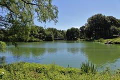 Central Park, New York royalty-vrije stock afbeeldingen