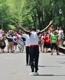 Central Park, New York royalty-vrije stock foto