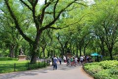 Central Park, New York royalty-vrije stock foto's