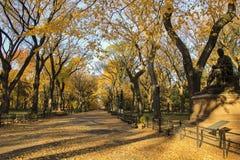 Central park New York autumn Stock Photography