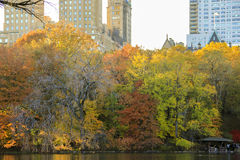 Central park New York Royalty Free Stock Photography