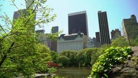 Central Park in New York stock videobeelden