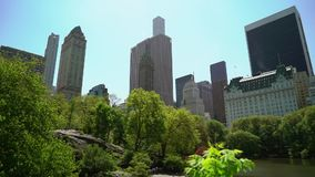 Central Park in New York stock video