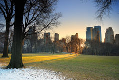Central Park, New York City Fotografia de Stock
