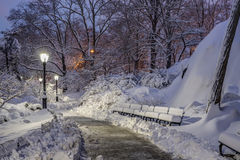 Central Park, New York City Stock Image