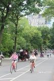 Central Park, New York City Imagem de Stock