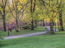 Central Park, New York City au printemps images libres de droits
