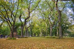 Central Park in New York City Royalty Free Stock Photography