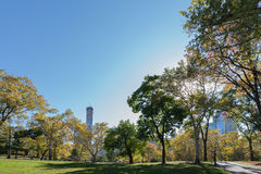 Central Park in New York City on autumn day Royalty Free Stock Image