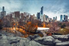 Central park at autumn morning Royalty Free Stock Photos