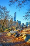 Central park at autumn morning Royalty Free Stock Photo