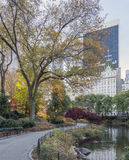 Central Park, New York City Royalty Free Stock Photography