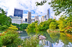 Central Park in New York City in autumn Royalty Free Stock Photos