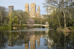 Central Park, New York City Bow bridge Royalty Free Stock Photo
