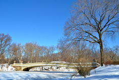Central Park, New York City bow bridge in the winter. New York. Royalty Free Stock Images