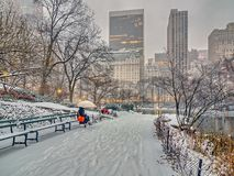 Central Park, New York City. During winter snw storm Royalty Free Stock Photography
