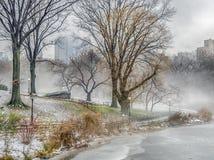 Central Park New York City dimmig morgon arkivfoton