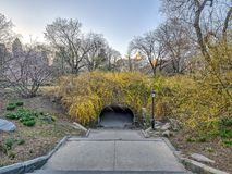 Central Park, New York City spring. Central Park, New York City  in early spring Royalty Free Stock Image
