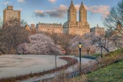 Central Park, New York City Stock Photos