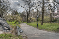 Central Park, New York City early spring Stock Images