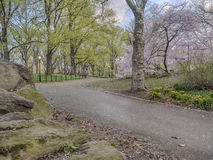 Central Park, New York City Stock Photography