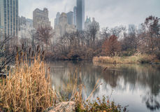 Central Park, New York City on foggy day Stock Images