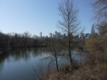 Central Park in New York City. With a lake and skyscrapers in the background Royalty Free Stock Images