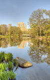 Central Park, New York City Malus 'Purple Prince' Stock Image