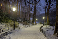 Central Park, New York City at night Stock Photography