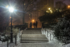 Central Park, New York City at night Stock Images