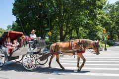 Central Park in New York City NYC Lizenzfreies Stockfoto