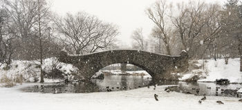 Central Park, New York City Panoramic Royalty Free Stock Photography