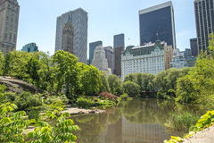 Central Park in New York City Stock Images
