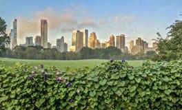 Central Park, New York City, prado de las ovejas Fotografía de archivo