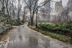 Central Park, New York City after rain storm. On sidewalk Royalty Free Stock Photos