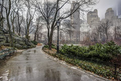 Central Park, New York City after rain storm. On sidewalk Stock Photo