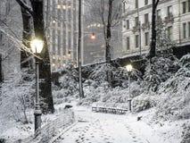 Central Park New York City snöstorm Royaltyfri Foto