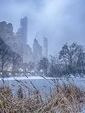 Central Park, New York City snow storm Royalty Free Stock Images