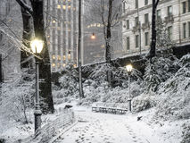 Central Park, New York City snow storm Royalty Free Stock Photo