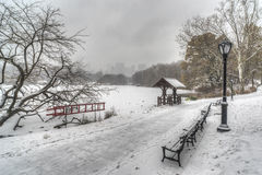 Central Park, New York City during snow storm Stock Image