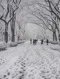 Central Park, New York City snow storm Royalty Free Stock Image