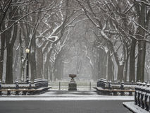 Central Park, New York City snow storm Stock Images