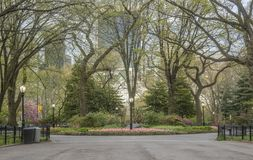 Central Park, New York City spring. Central Park, New York City  in early spring Stock Images