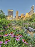 Central Park, New York City spring. Central Park, New York City in early spring royalty free stock photo