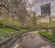 Central Park, New York City in spring Royalty Free Stock Images