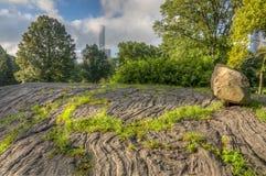 Central Park, New York City, sumer fotografia de stock